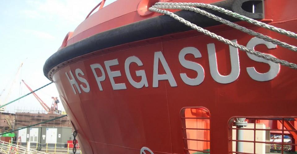 NB27 HS Pegasus 2013